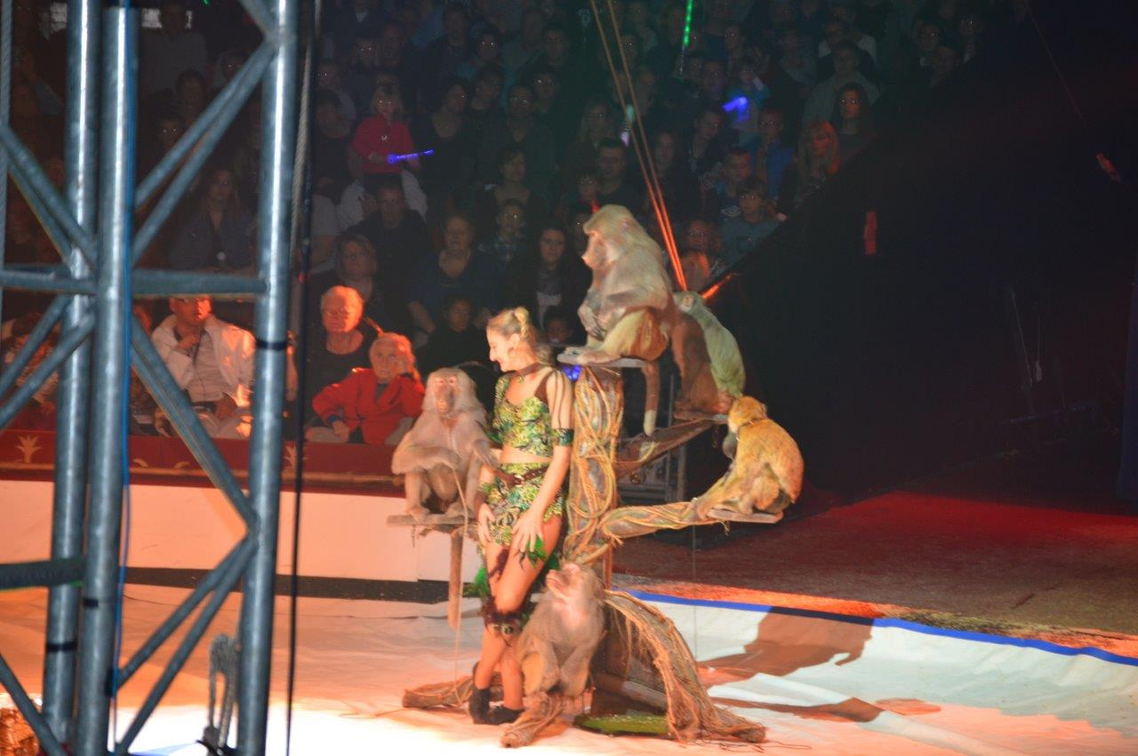 Cirque Gener 2015 (20)