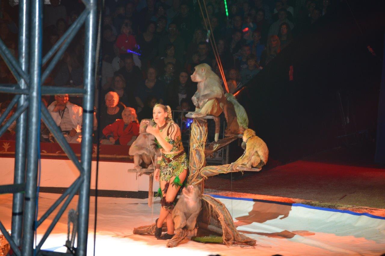 Cirque Gener 2015 (21)