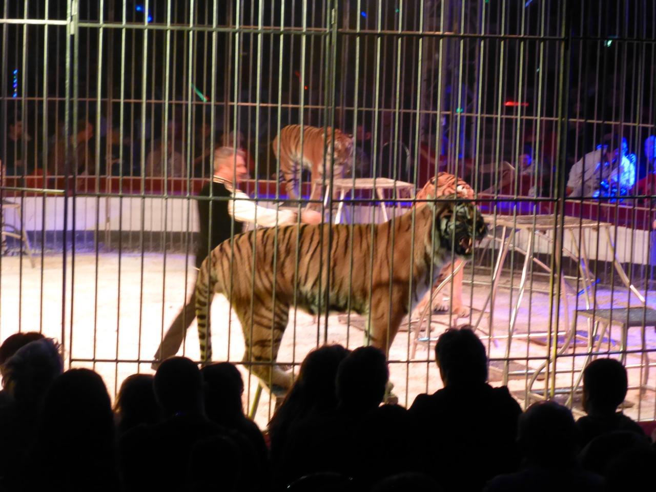 Cirque generosite (22)