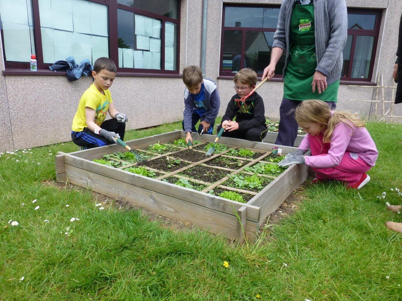 Jardinage (3)
