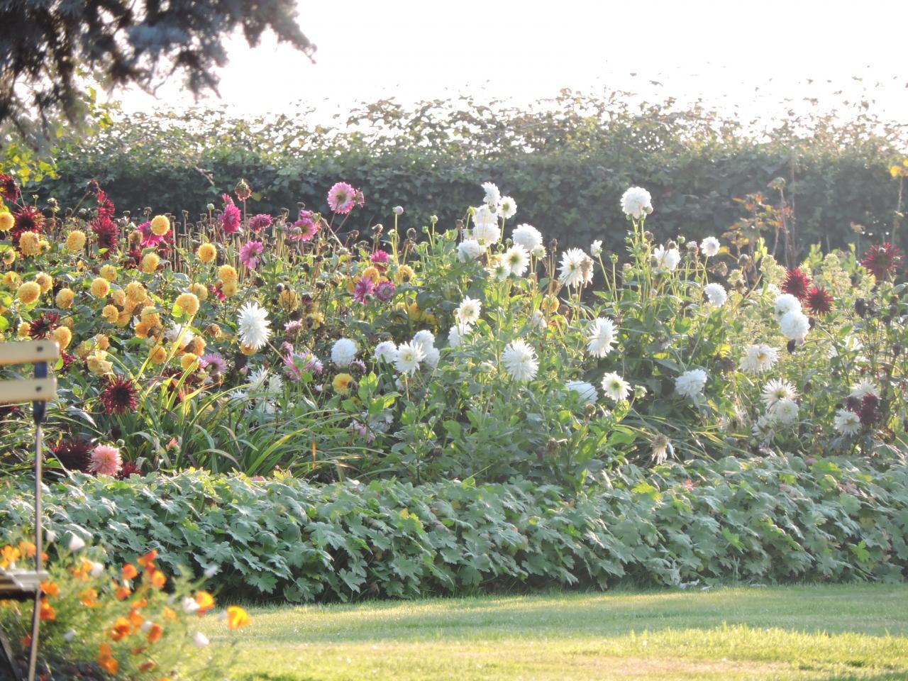 Maisons fleuries 2014 (17)