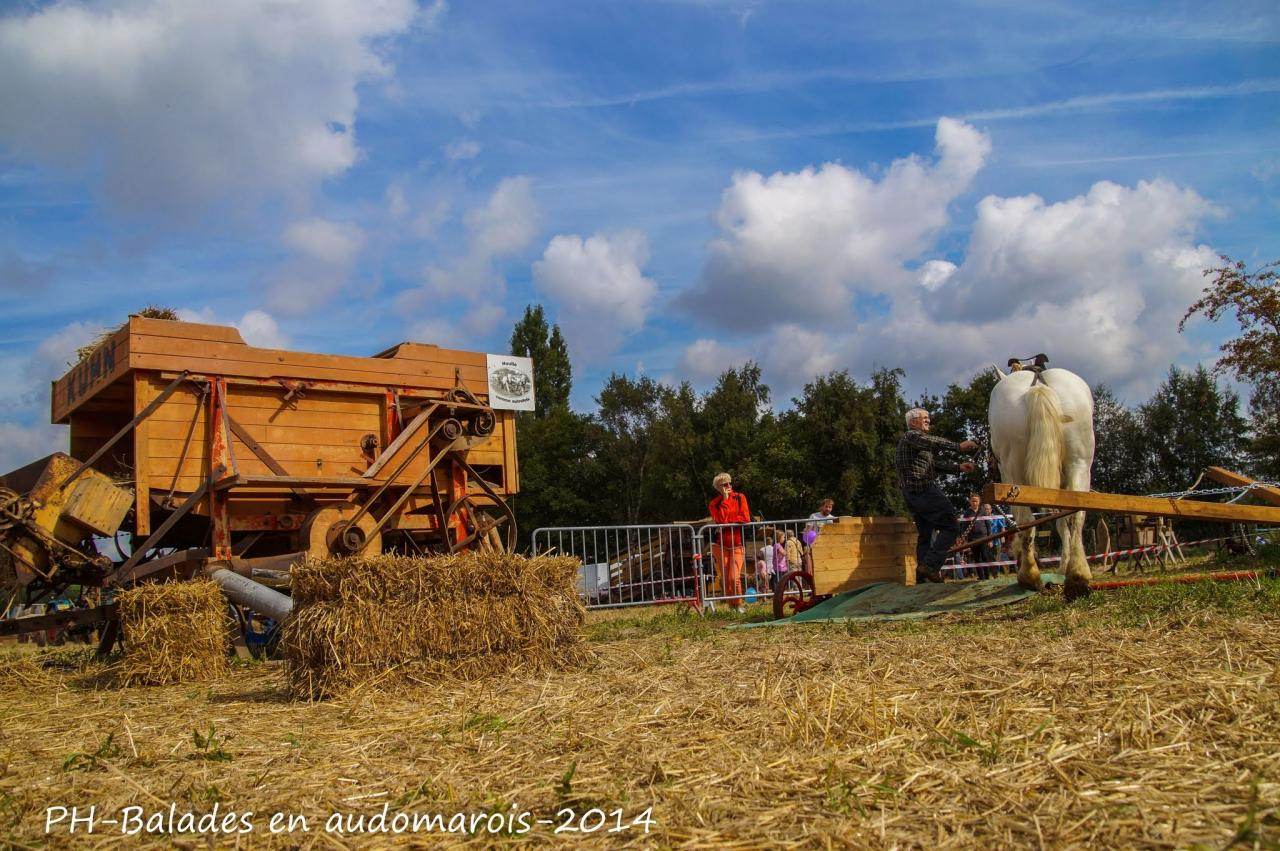 Moisson 2014 Phil Hudelle (56)