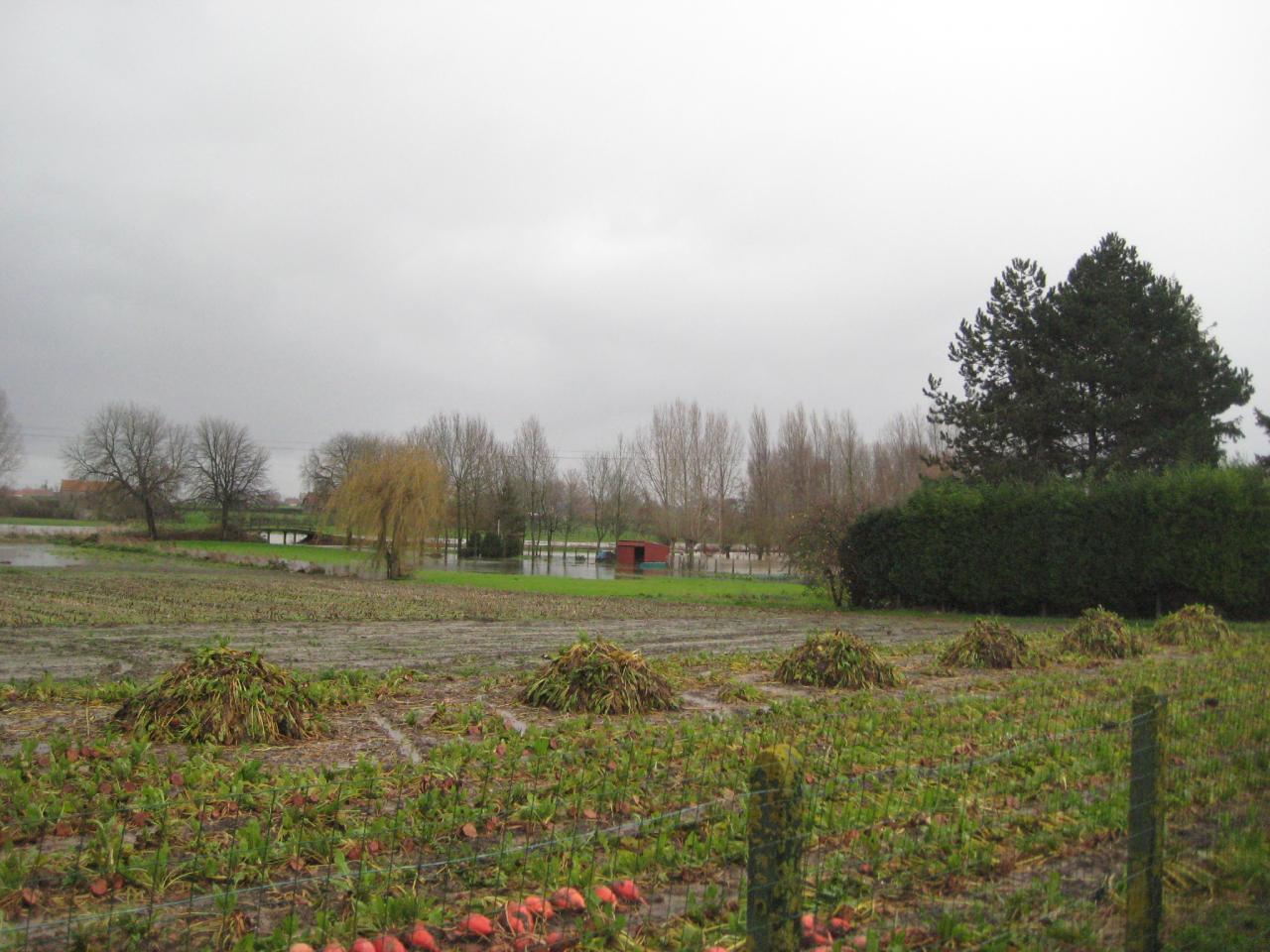 Novembre 2009 (18)