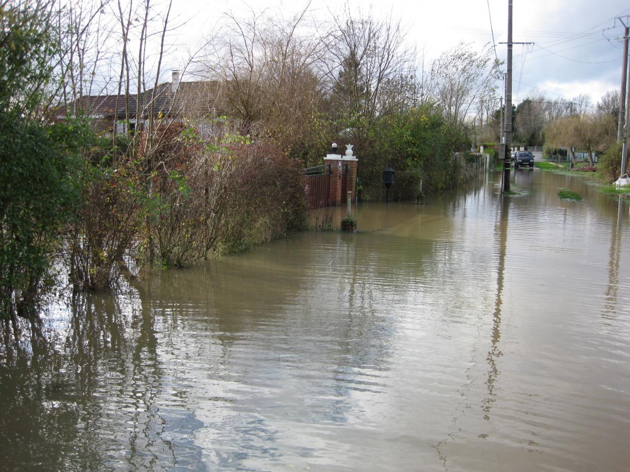 Novembre 2009 (2)