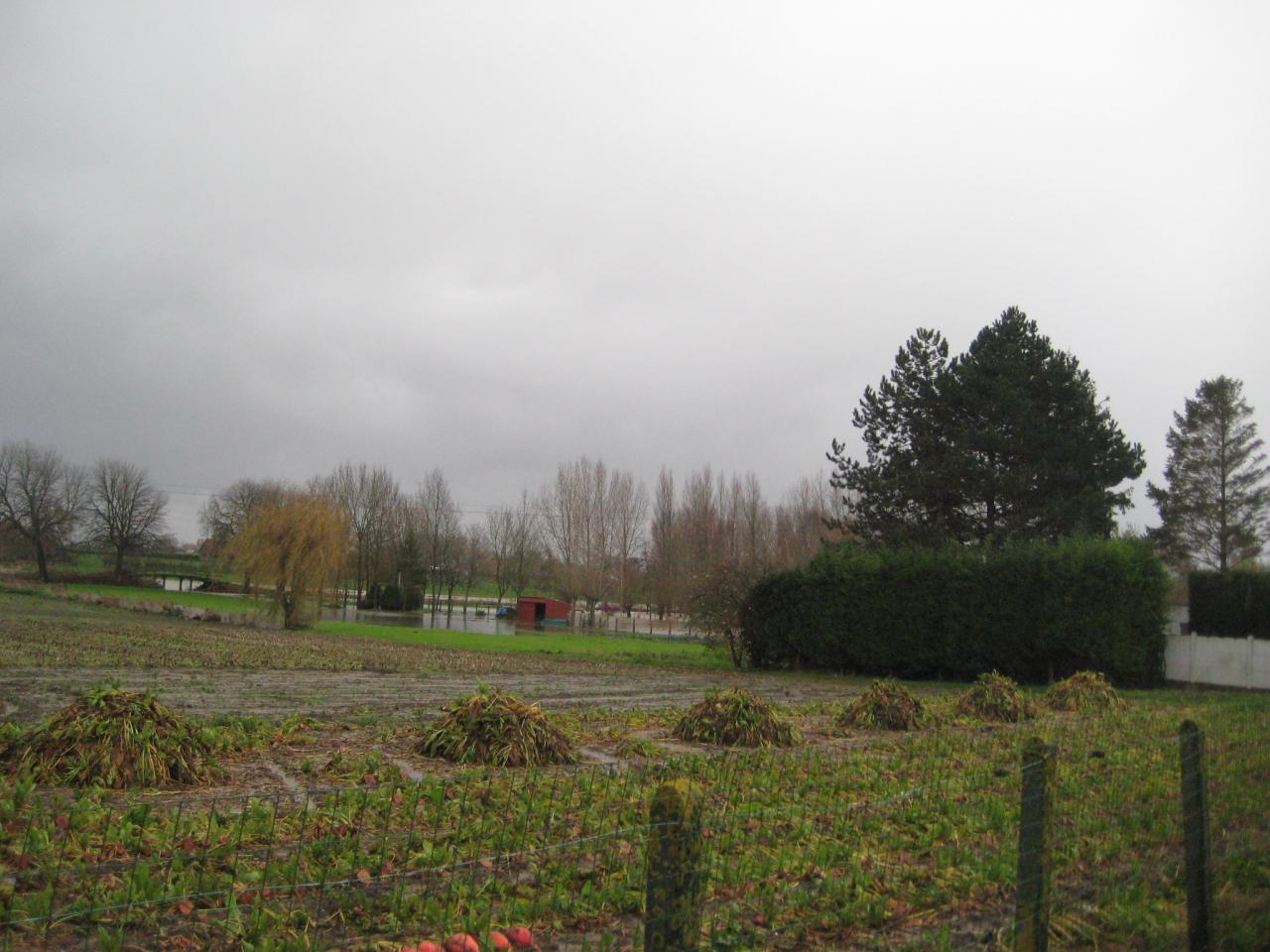 Novembre 2009 (20)
