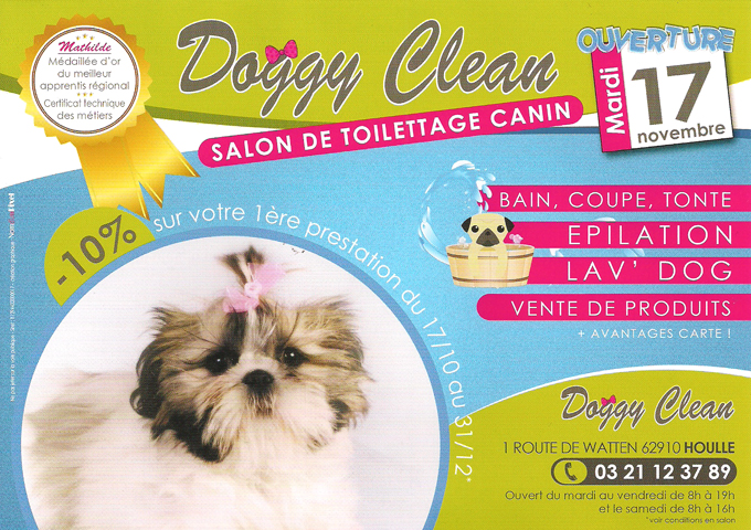 Doggy clean