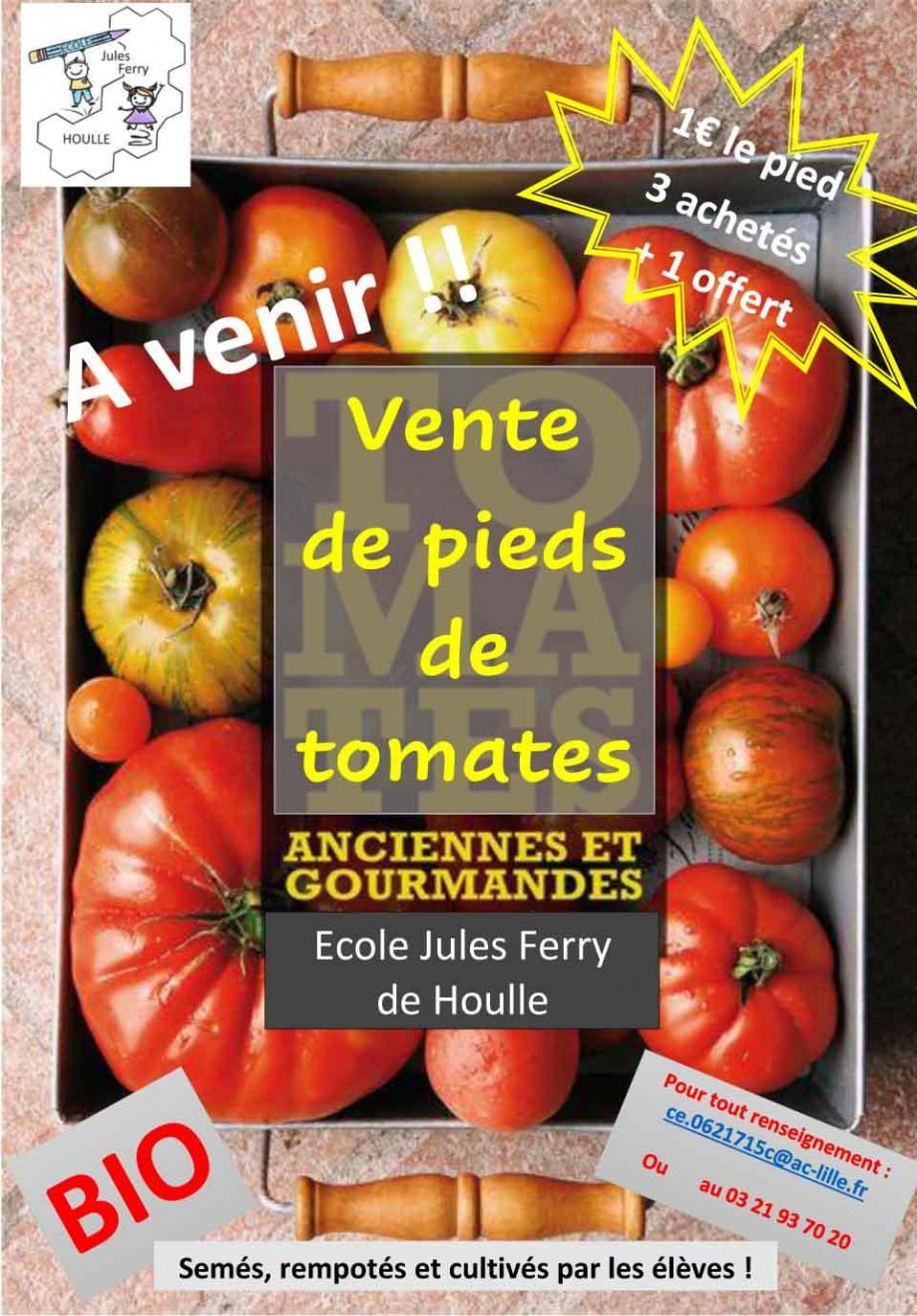Ecole jules ferry houlle vente de pieds de tomates